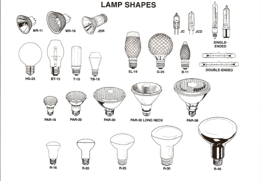 Identify Bulbs By Shape Bing Images
