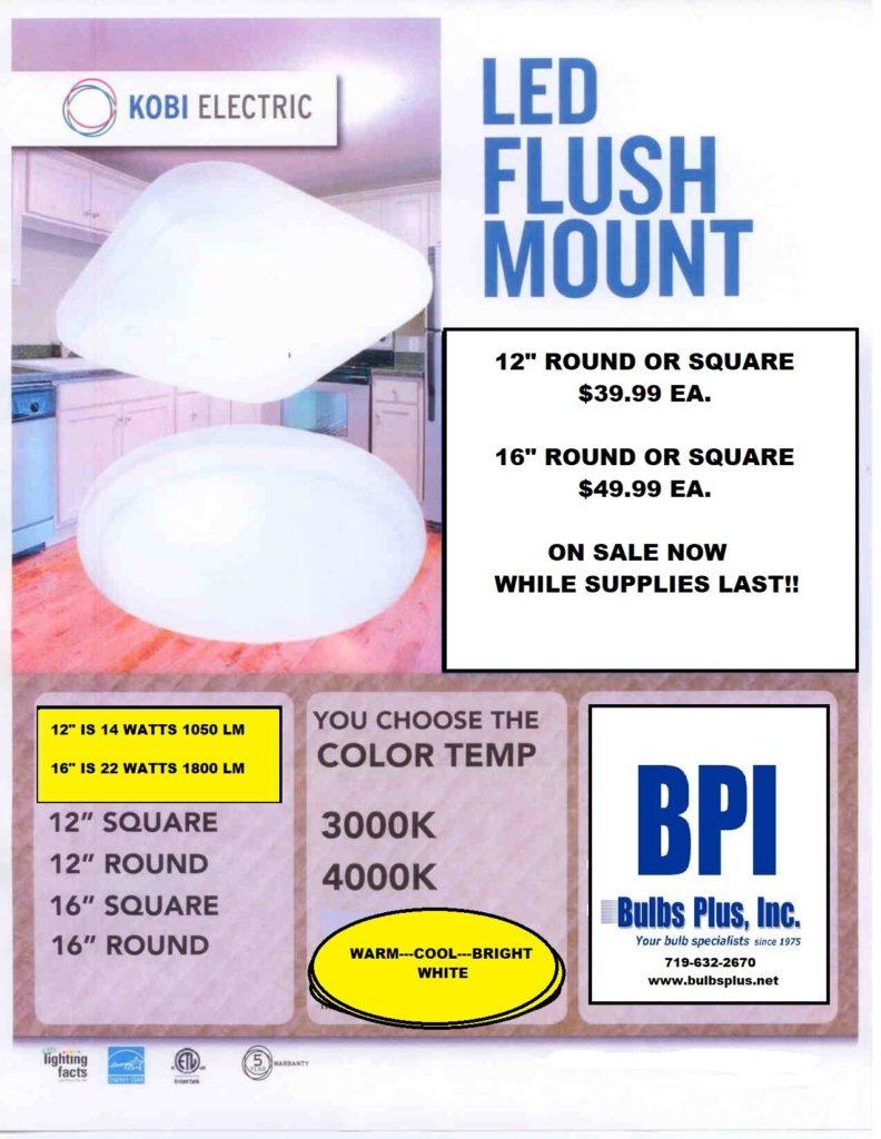 FLUSH MOUNT (3)